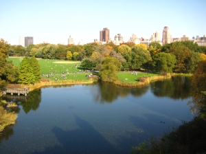 View of Central Park from the castle